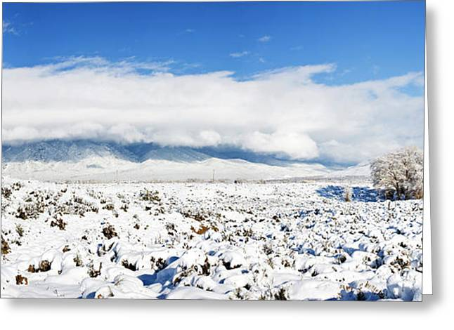 Sage Covered With Snow With Taos Greeting Card by Panoramic Images