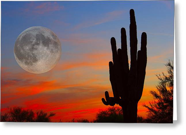 Sunset Prints Photographs Greeting Cards - Saguaro Full Moon Sunset Greeting Card by James BO  Insogna