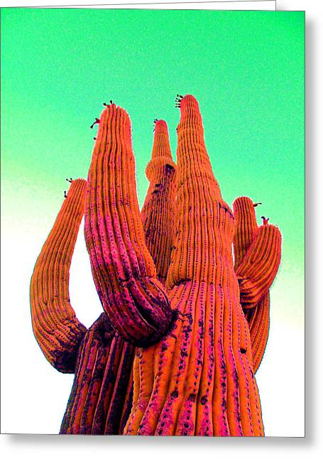 Scottsdale Artist Greeting Cards - Saguaro Unity Greeting Card by Michelle Dallocchio