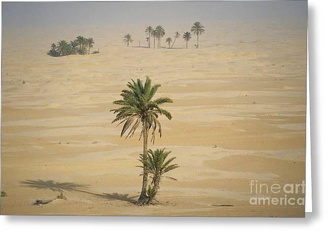 Northern Africa Greeting Cards - Sahara Desert, Tunisia Greeting Card by Kees Van Den Berg