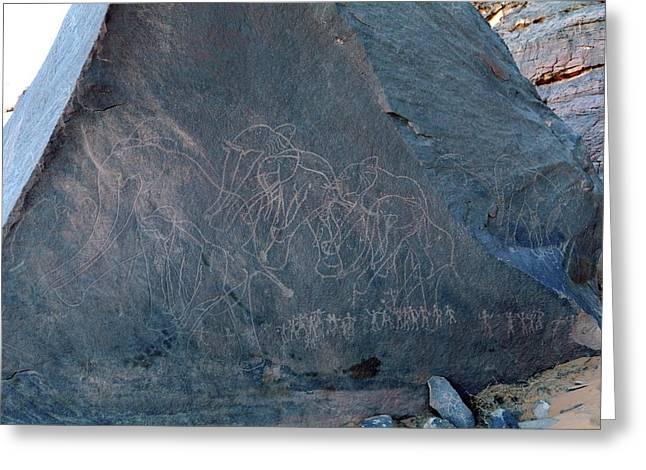 Saharan Elephant Carvings Greeting Card by Martin Rietze