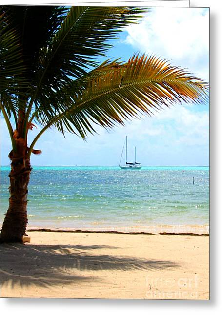 Ocean Sailing Greeting Cards - Sail Away Greeting Card by Amy Steeples