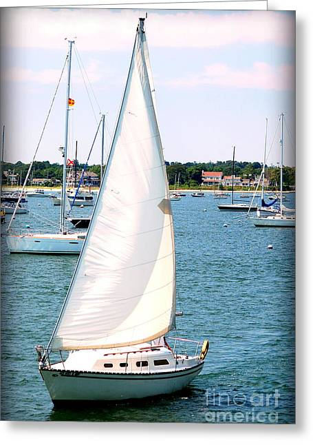 Wind In The Sails Greeting Cards - Sail Away Greeting Card by Katie Jeans