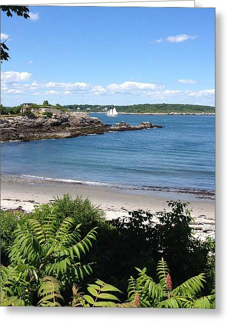 Maine Shore Greeting Cards - Sail Away Greeting Card by Patricia Urato