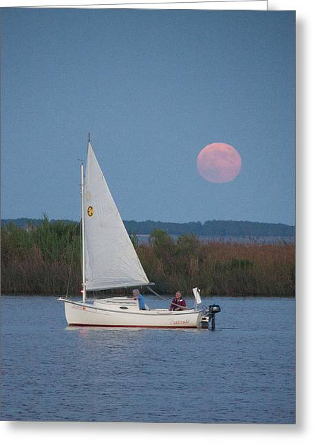 Blue Sailboats Greeting Cards - Sail Boat and Full Moon V Greeting Card by Frank Tozier