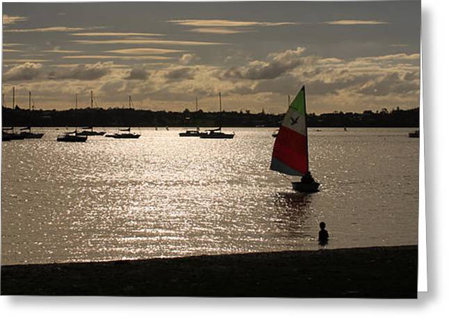 Boats On Water Greeting Cards - Sail boat at Bucklands Beach Greeting Card by Gee Lyon