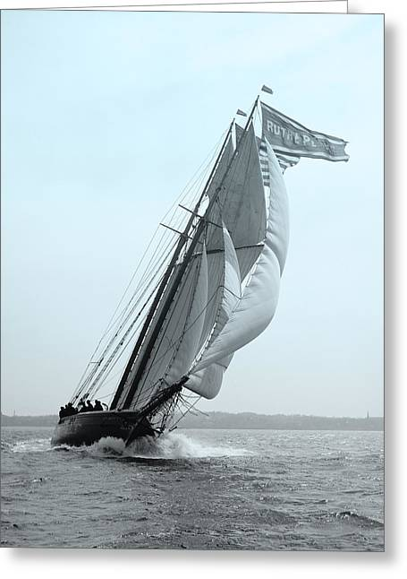 Ocean Photography Greeting Cards - Sail Racing Greeting Card by Gary Grayson