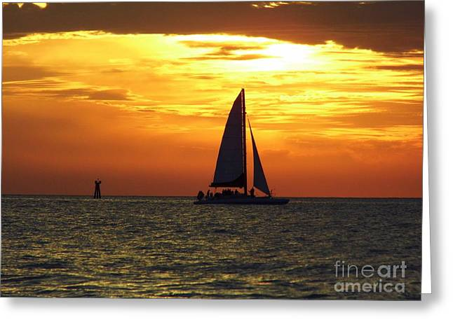 Reflection Of Sun In Clouds Greeting Cards - Sailboat At Sunset Greeting Card by D Hackett