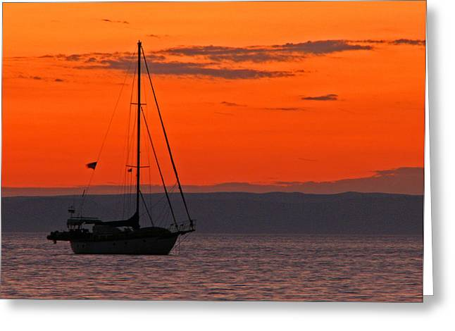 Sailboat Photos Greeting Cards - Sailboat at Sunset Greeting Card by Marcia Socolik
