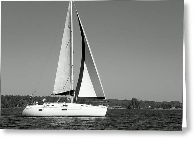 Boat Greeting Cards - Sailboat Black and White Greeting Card by Lisa Wooten