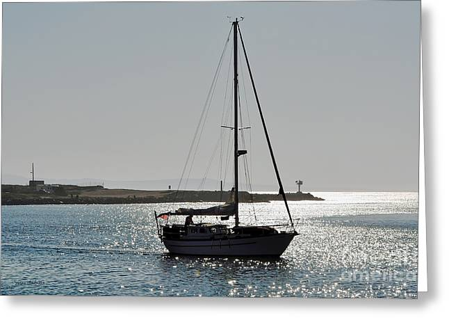 Moss Landing Boats Greeting Cards - Sailboat Heading Home Greeting Card by Susan Wiedmann