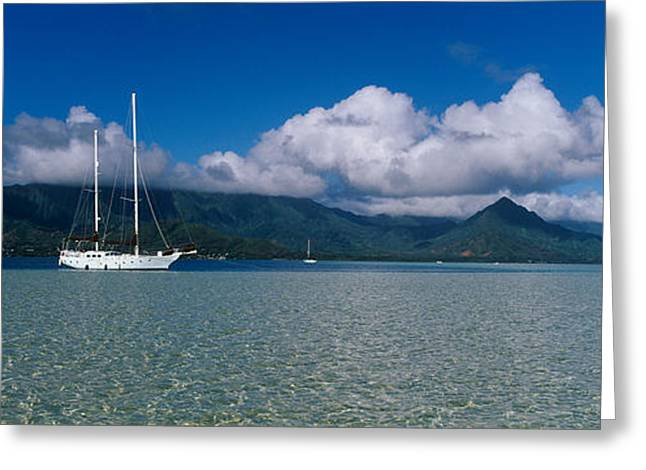 Water Vessels Greeting Cards - Sailboat In A Bay, Kaneohe Bay, Oahu Greeting Card by Panoramic Images