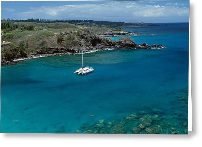 Blue Sailboat Greeting Cards - Sailboat In The Bay, Honolua Bay, Maui Greeting Card by Panoramic Images