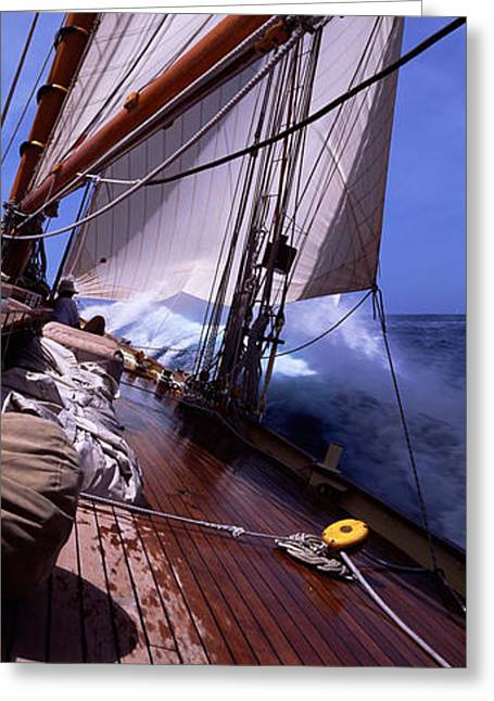 Sailboat Images Greeting Cards - Sailboat In The Sea, Antigua, Antigua Greeting Card by Panoramic Images