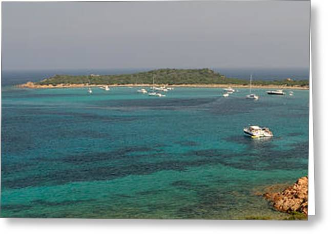 Sailboat Images Greeting Cards - Sailboat In The Sea, Capo Coda Cavallo Greeting Card by Panoramic Images