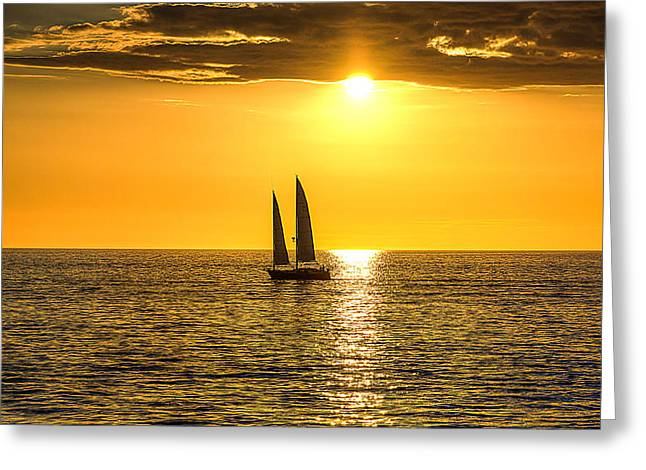 Sailboats In Water Greeting Cards - Sailboat in the Sunset Greeting Card by Matt Shiffler