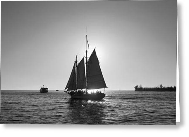 Yellow Sailboats Greeting Cards - Sailboat, Key West, Florida, Usa Greeting Card by Panoramic Images