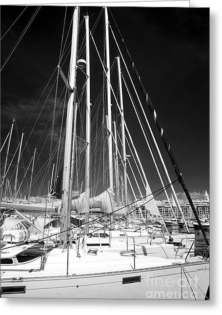 Sailboat Art Greeting Cards - Sailboat Nap Greeting Card by John Rizzuto