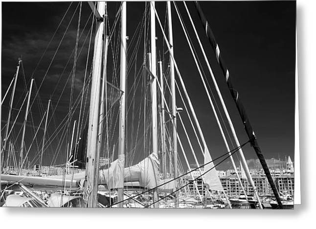 Sailboat Nap Greeting Card by John Rizzuto