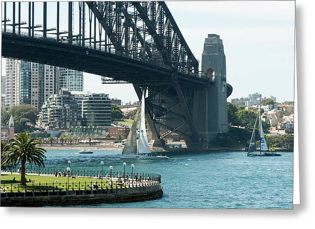 Sailboat Images Greeting Cards - Sailboat Passing Under The Sydney Greeting Card by Panoramic Images
