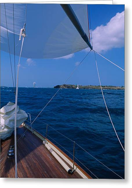 Adventure Of The Seas Greeting Cards - Sailboat Racing In The Sea, Grenada Greeting Card by Panoramic Images