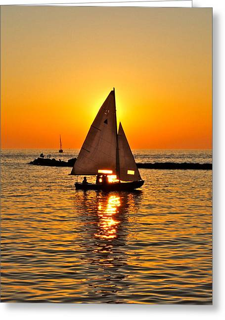 Yes Greeting Cards - Sailboat Sunset Greeting Card by Frozen in Time Fine Art Photography