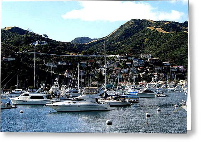 Toy Boat Greeting Cards - Sailboats And Catalina Island Greeting Card by Jay Milo