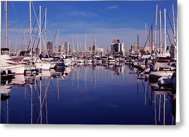 Sailboat Images Greeting Cards - Sailboats At A Harbor, Long Beach, Los Greeting Card by Panoramic Images