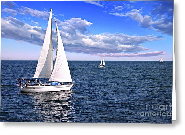 Blue Sailboat Greeting Cards - Sailboats at sea Greeting Card by Elena Elisseeva