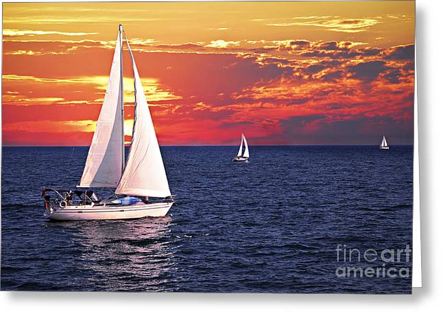 Boats. Water Greeting Cards - Sailboats at sunset Greeting Card by Elena Elisseeva