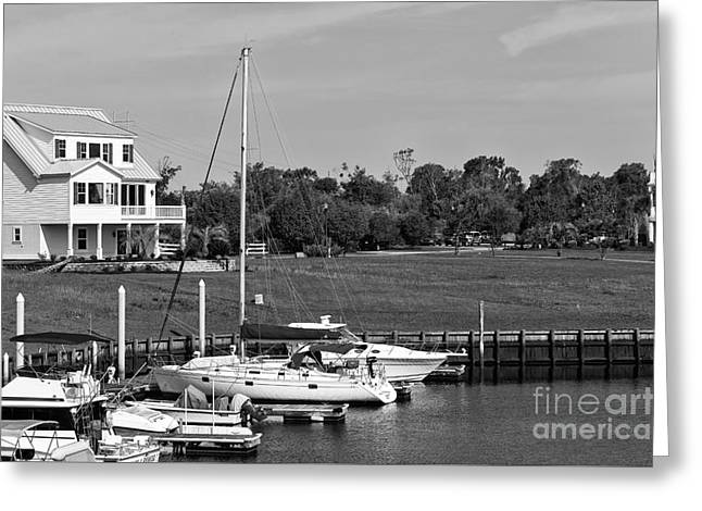 Sailboats Docked Greeting Cards - Sailboats Docked at North Myrtle Beach mono Greeting Card by John Rizzuto