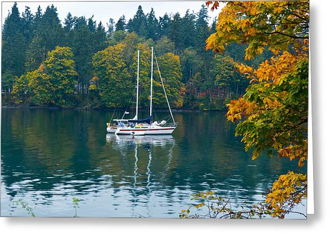 Sailboat Images Greeting Cards - Sailboats In A Lake, Washington State Greeting Card by Panoramic Images