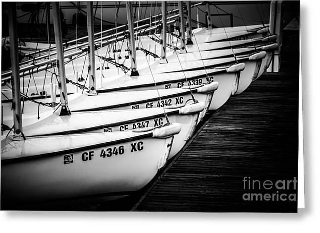Docked Boats Greeting Cards - Sailboats in Newport Beach California Picture Greeting Card by Paul Velgos