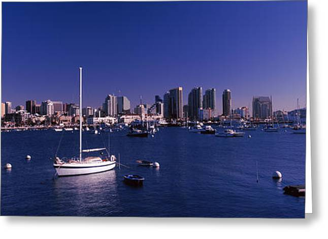 Blue Sailboat Greeting Cards - Sailboats In The Bay, San Diego Greeting Card by Panoramic Images