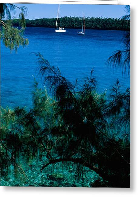 Sailboats In Water Greeting Cards - Sailboats In The Ocean, Kingdom Greeting Card by Panoramic Images