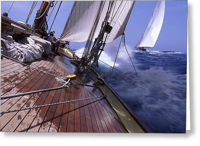 Blue Sailboat Greeting Cards - Sailboats In The Sea, Antigua, Antigua Greeting Card by Panoramic Images