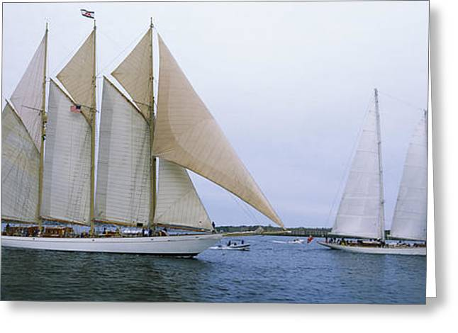New England Ocean Greeting Cards - Sailboats In The Sea, Narragansett Bay Greeting Card by Panoramic Images