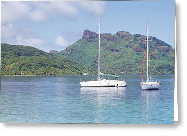 Sailboat Images Greeting Cards - Sailboats In The Sea, Tahiti, Society Greeting Card by Panoramic Images
