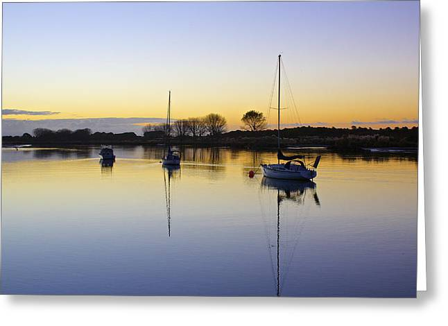 Sailboat Images Greeting Cards - Sailboats in Whakatane at Sunset Greeting Card by Venetia Featherstone-Witty