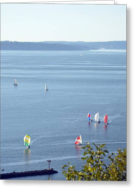 Ocean Sailing Greeting Cards - Sailboats on Puget Sound 2014 Greeting Card by Carol  Eliassen