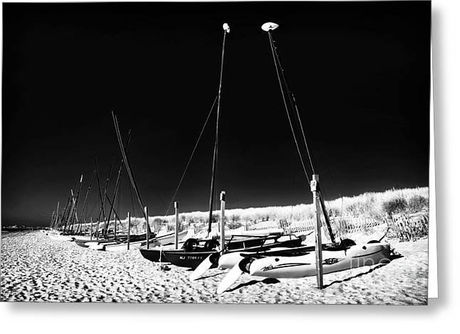 Sailboat Art Greeting Cards - Sailboats on the Shore Greeting Card by John Rizzuto