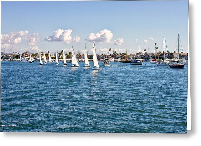 Boats On Water Greeting Cards - Sailing Greeting Card by Angela A Stanton