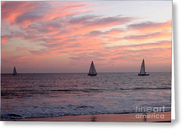 Santa Cruz Sailboat Greeting Cards - Sailing at Dusk 2 Greeting Card by Theresa Ramos-DuVon
