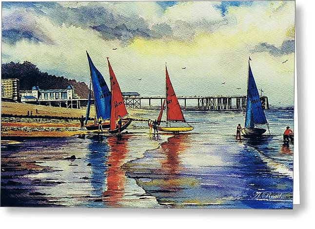 Sea Birds Drawings Greeting Cards - Sailing at Penarth Greeting Card by Andrew Read