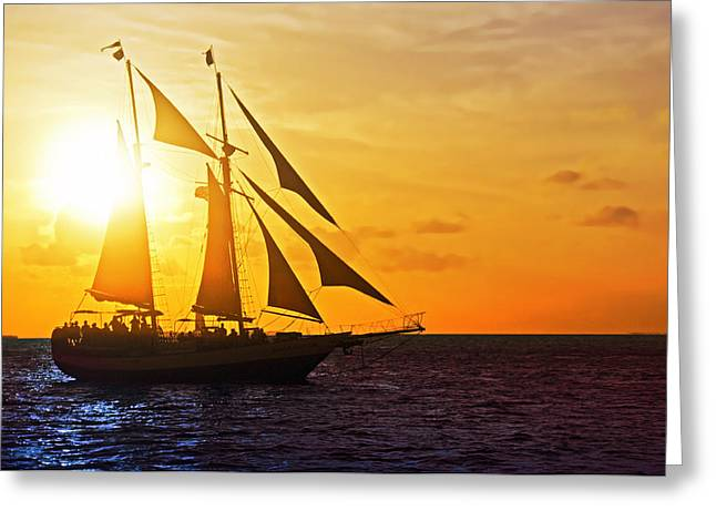 Florida Greeting Cards - Sailing at Sunset Greeting Card by Alida Thorpe