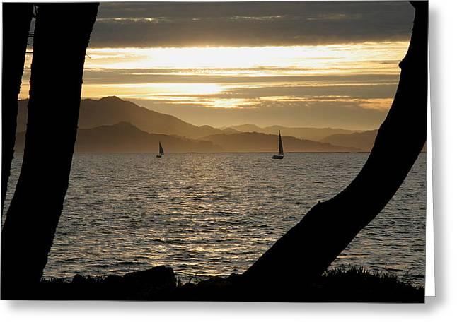 Sailing At Sunset On The Bay Greeting Card by Robert Woodward