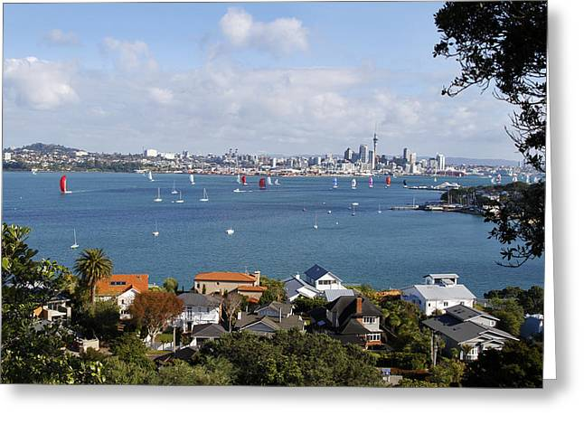 Blue Sailboat Greeting Cards - Sailing Auckland Greeting Card by Les Cunliffe