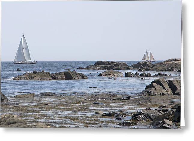 Kennebunkport Greeting Cards - Sailing Greeting Card by Betsy C  Knapp