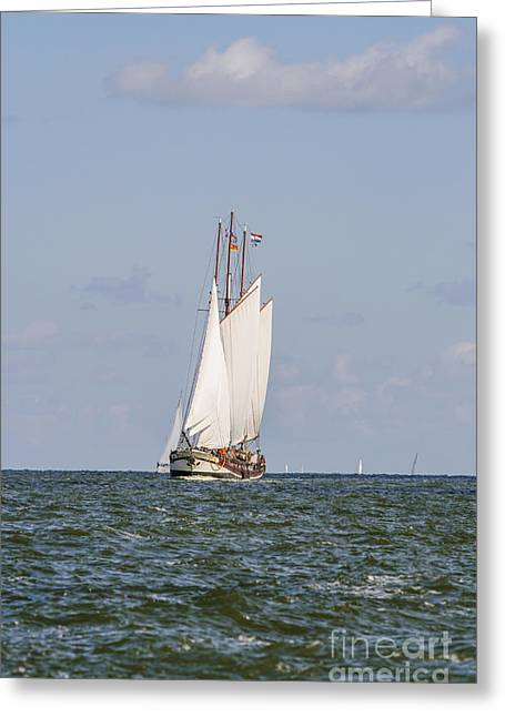 Morning Race Greeting Cards - Sailing boat Greeting Card by Patricia Hofmeester