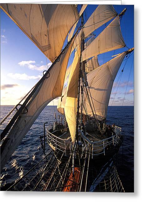 Sailing Ship Greeting Cards - Sailing boats Kruzenshtern Greeting Card by Anonymous